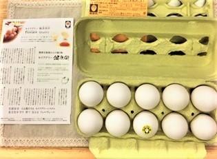 20190830セイアグリー健康卵