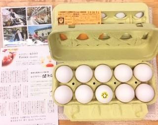 20190928セイアグリー健康卵