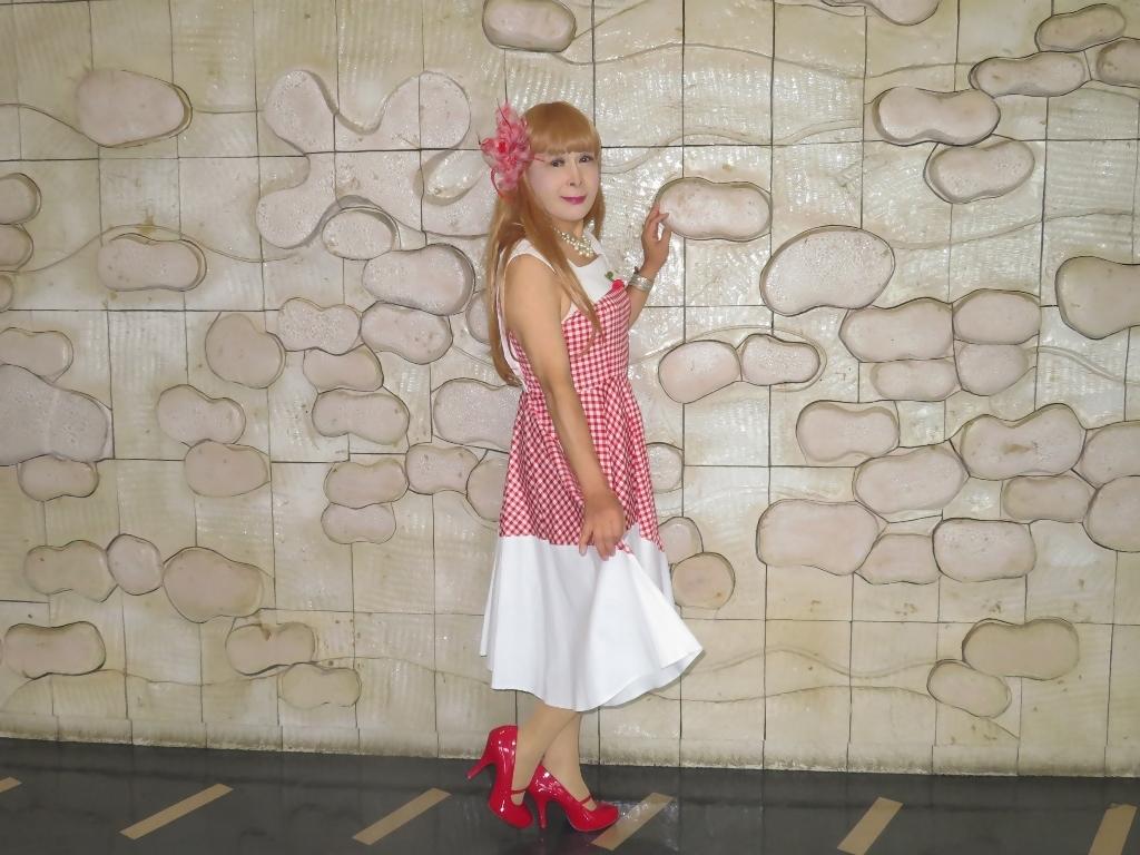 赤白格子柄舞台ドレスA(5)