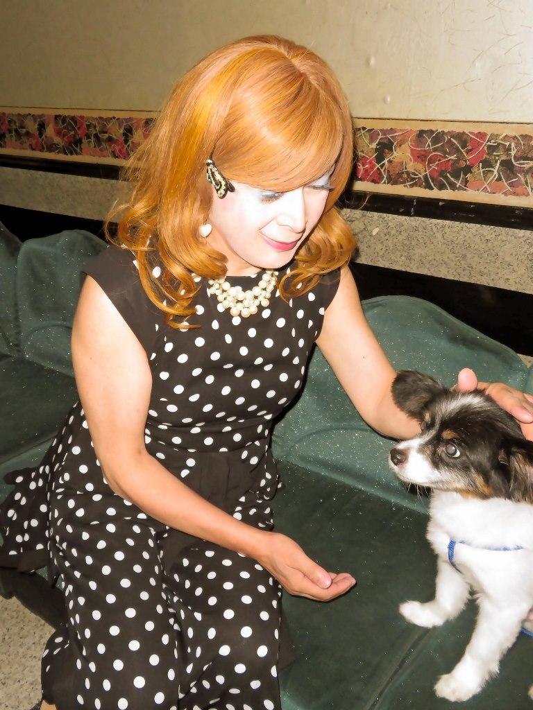 黒水玉パンツドレスと子犬(1)