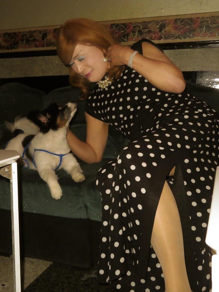 黒水玉パンツドレスと子犬(3)
