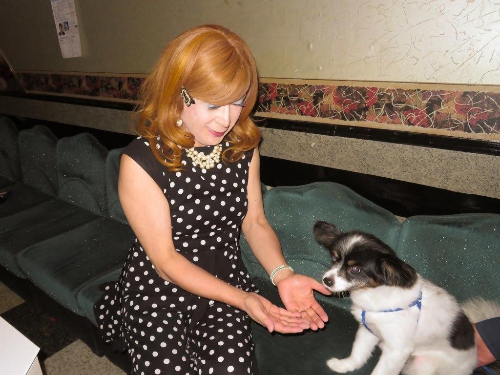黒水玉パンツドレスと子犬(4)