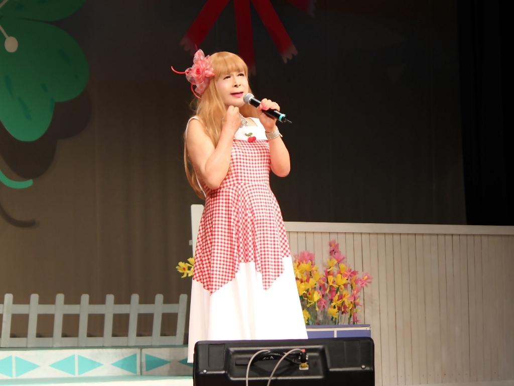 赤白格子柄舞台ドレス横画像(2)