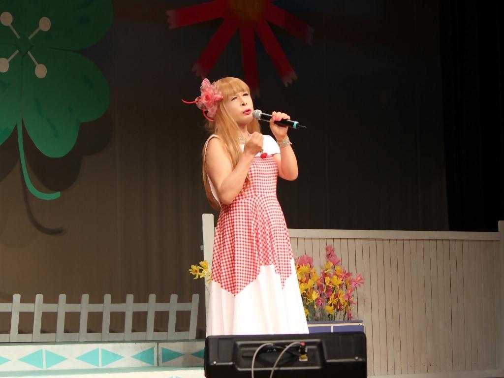 赤白格子柄舞台ドレス横画像(3)