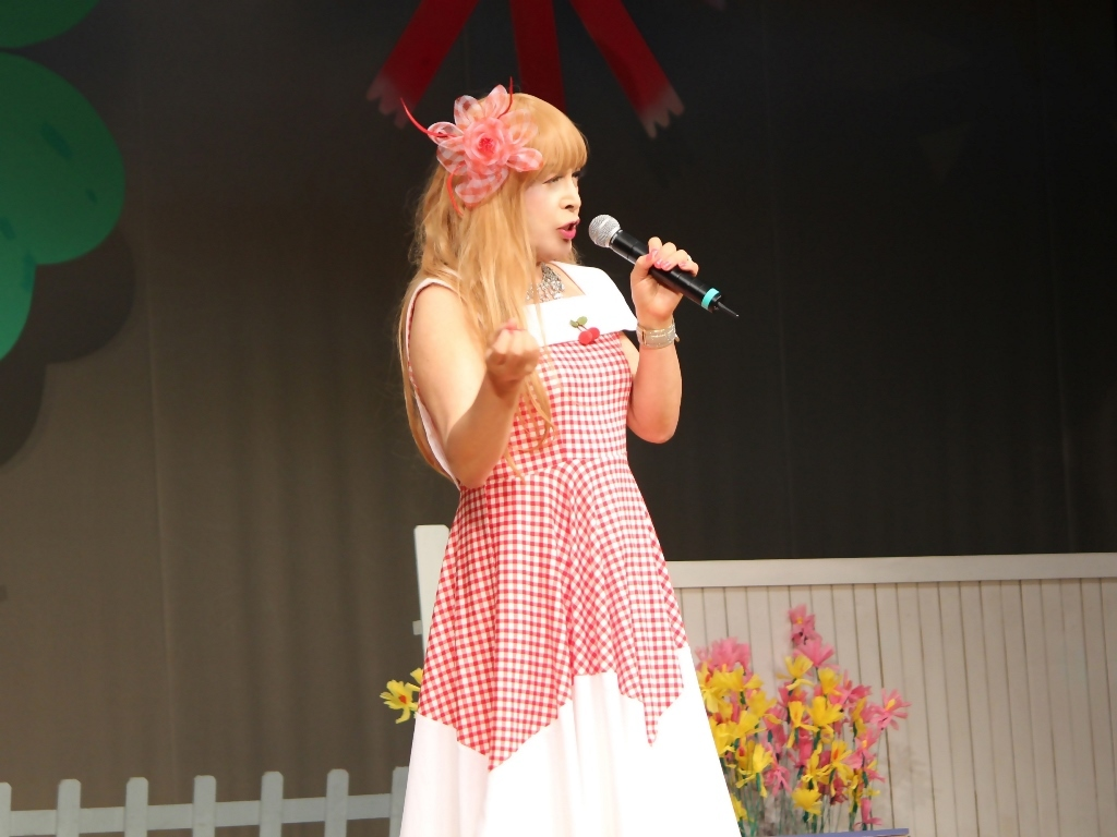 赤白格子柄舞台ドレス横画像(5)