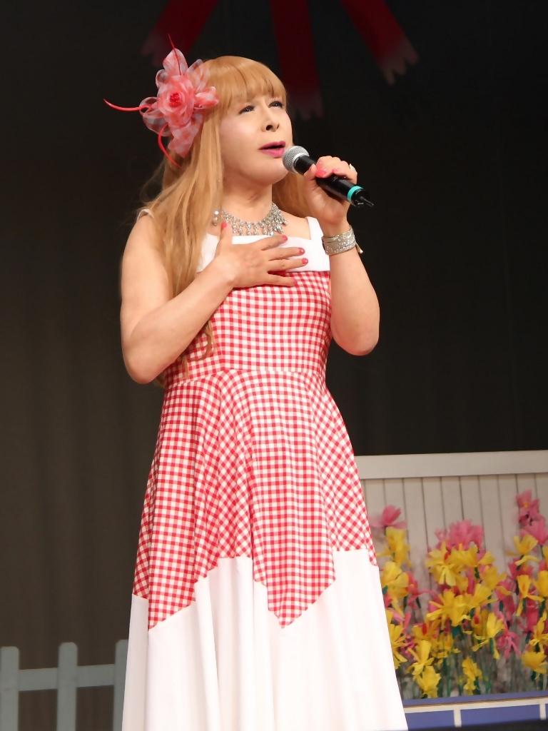 赤白格子柄舞台ドレス縦画像(8)