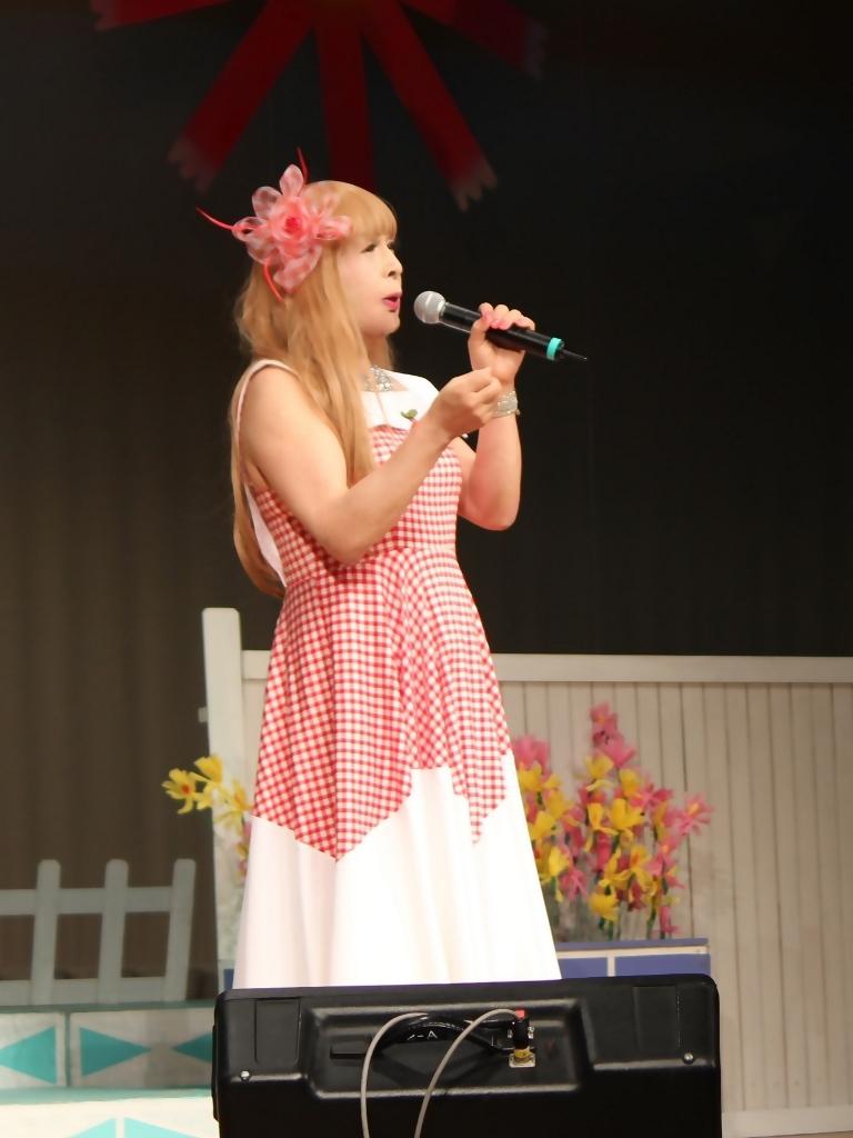 赤白格子柄舞台ドレス縦画像(3)