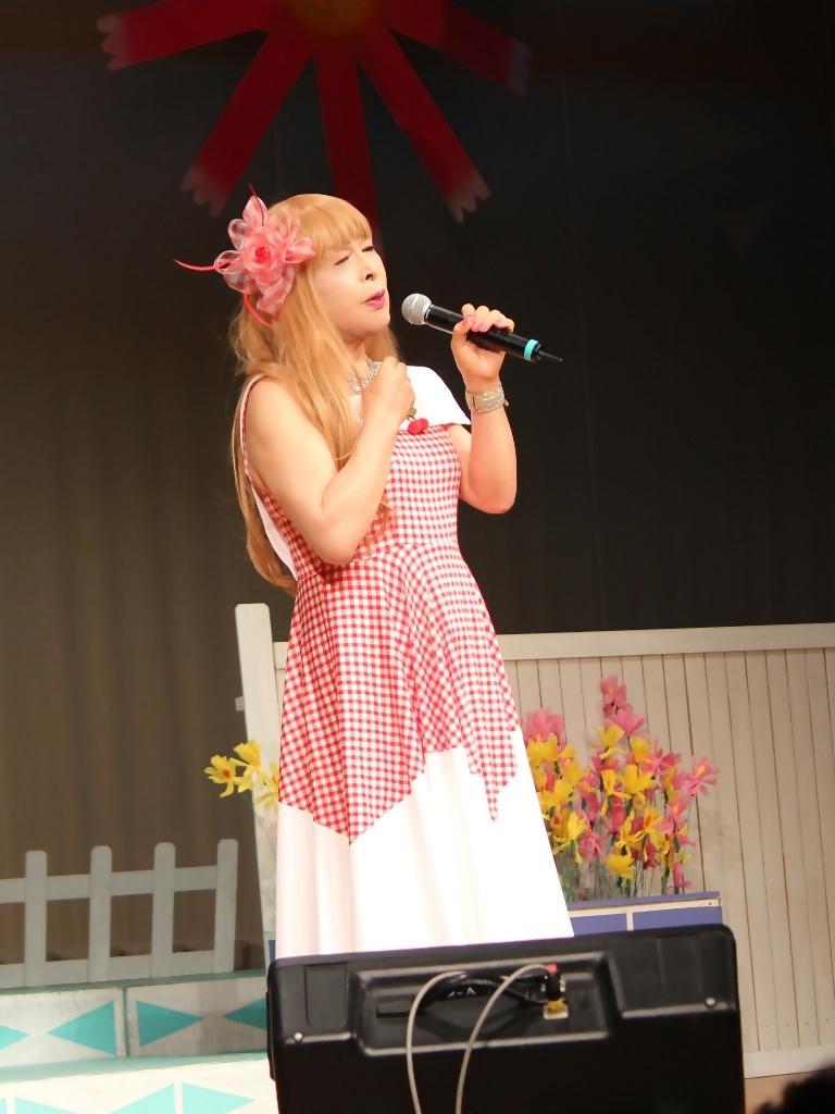 赤白格子柄舞台ドレス縦画像(5)