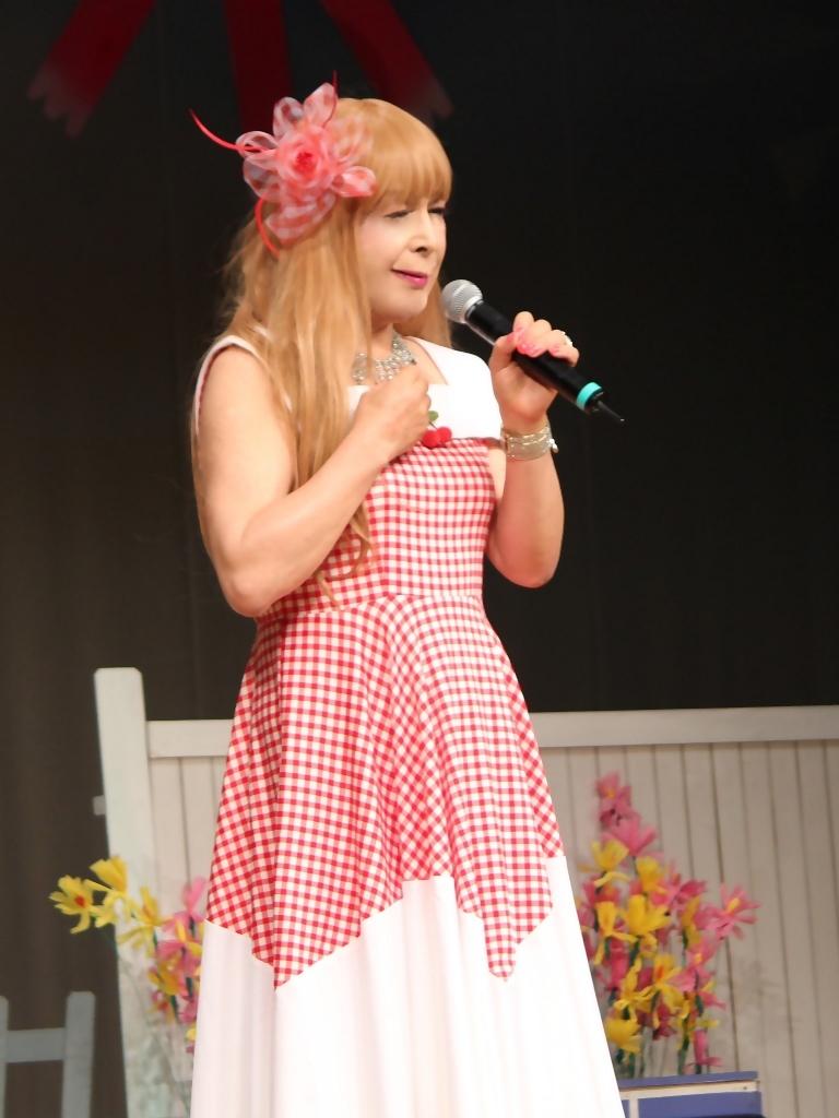 赤白格子柄舞台ドレス縦画像(7)