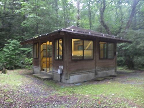 森きちオートキャンプ場6
