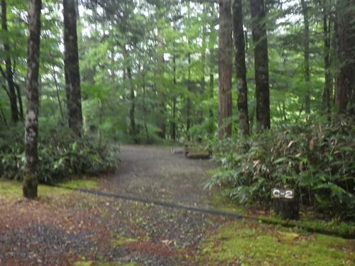 森きちオートキャンプ場9
