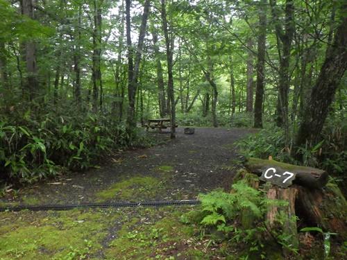森きちオートキャンプ場12