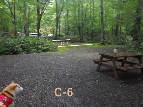 森きちオートキャンプ場13