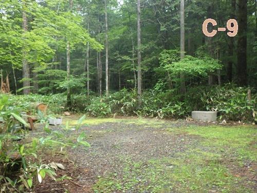森きちオートキャンプ場14
