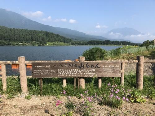 霊仙寺湖ドッグラン2