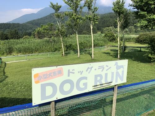 霊仙寺湖ドッグラン14