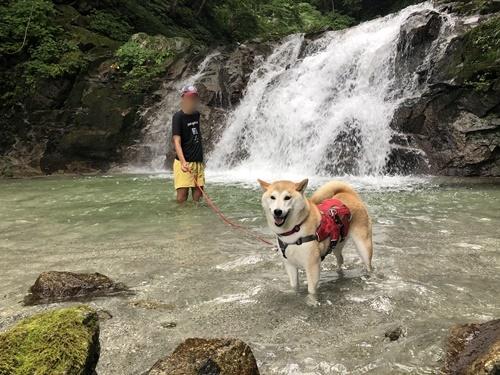 精進ヶ滝17