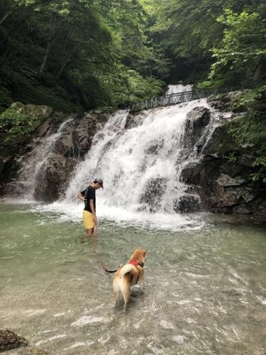 精進ヶ滝18