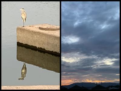 Collage_Fotor1003mnmjyyy_convert_20191003102818.jpg
