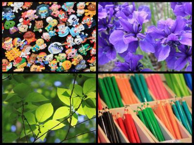 Collage_Fotor727mnmjhbhyu_convert_20190727153100.jpg