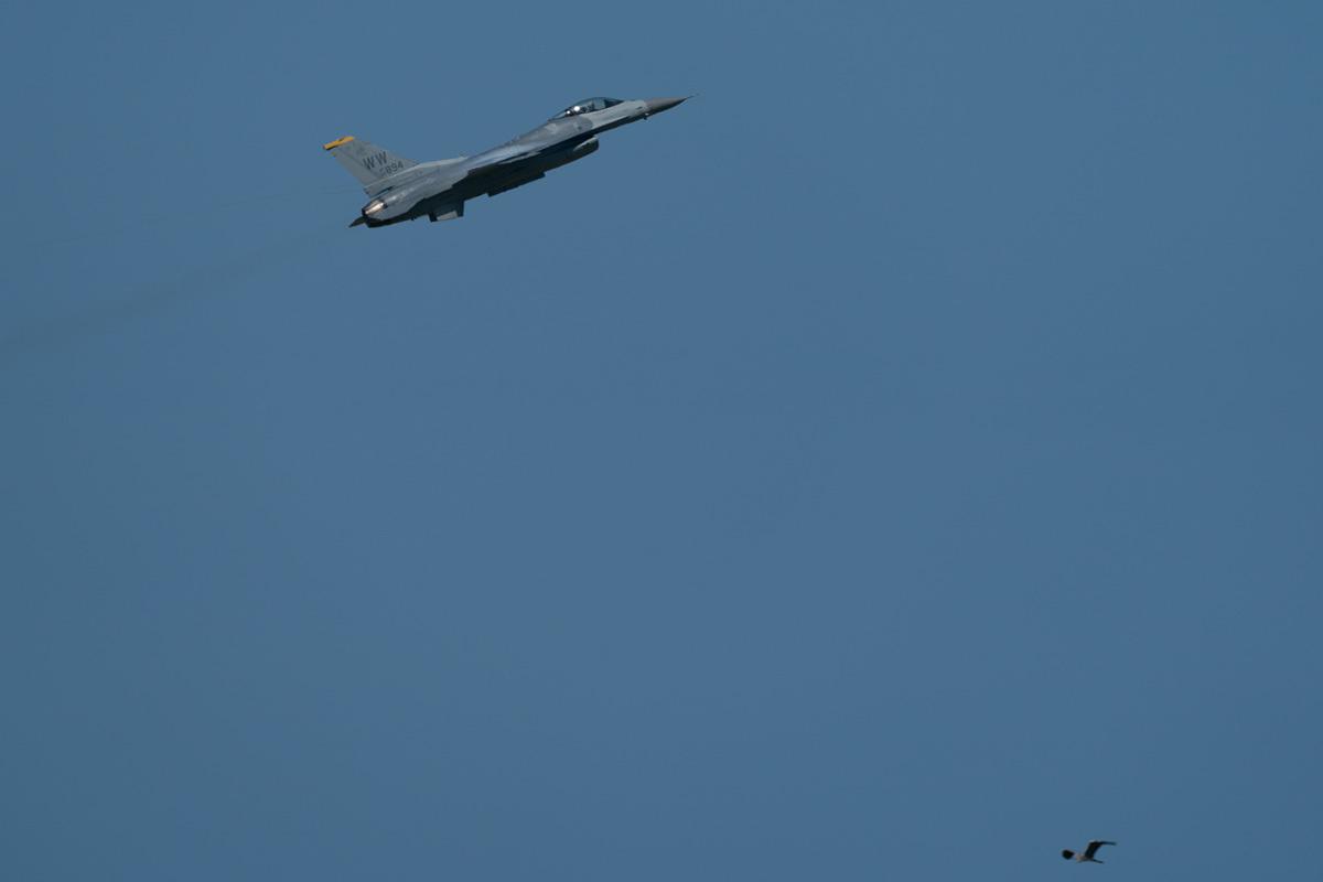 F16-A9_04273.jpg
