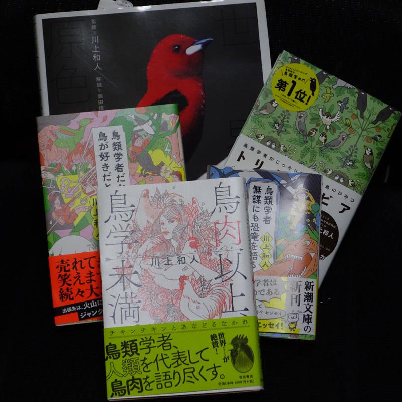 kawakami-DSC07847.jpg