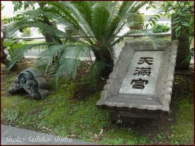 20190707 門まで 5  成子天神社