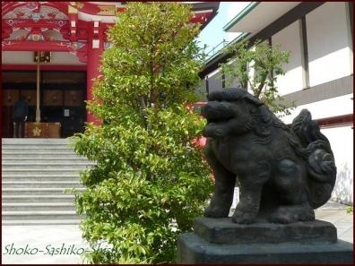 20190712 茅の輪まで 5  成子天神社