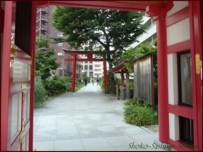 20190712 茅の輪まで 10  成子天神社