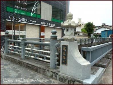 20190731 水前寺公園まで 2  熊本
