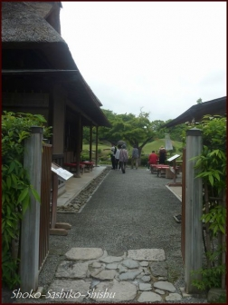 20190731 水前寺公園まで 7  熊本