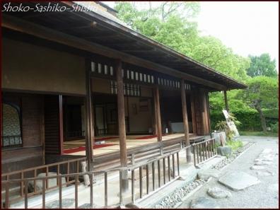 20190731 水前寺公園まで 8  熊本