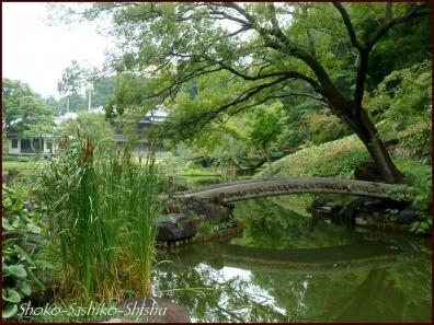 20190830 西門から 4  肥後細川庭園