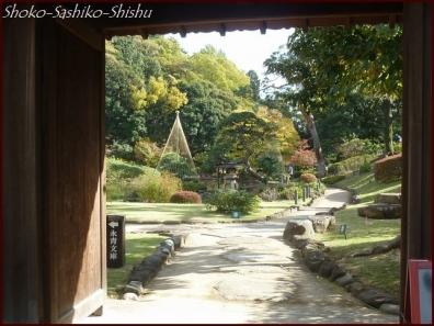 20191127 池まで 2  細川庭園