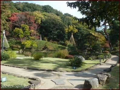 20191127 池まで 3  細川庭園