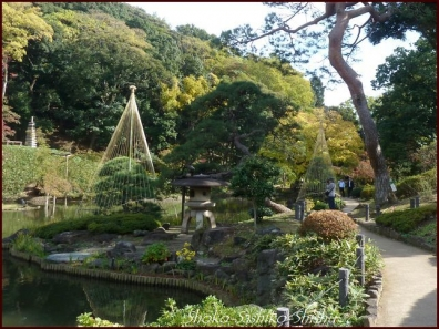 20191127 池まで 5  細川庭園