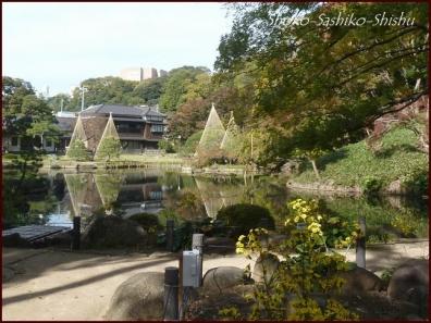 20191127 池を一周 2  細川庭園