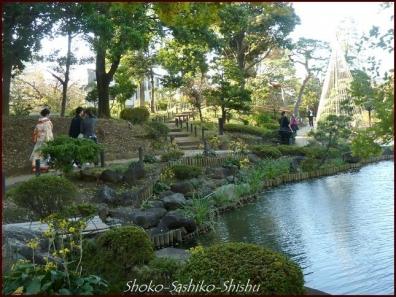 20191127 池を一周 6  細川庭園
