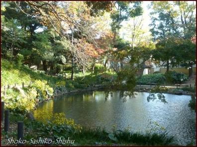 20191127 池を一周 7  細川庭園