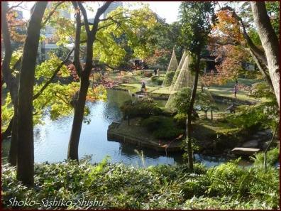 20191127 池を一周 11  細川庭園
