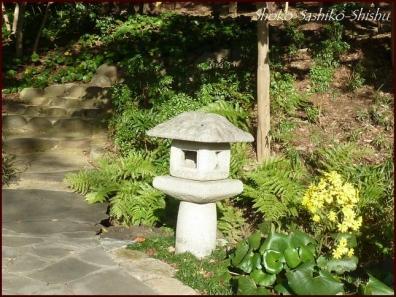 20191127 池を一周 12  細川庭園