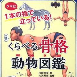 くらべる骨格動物図鑑