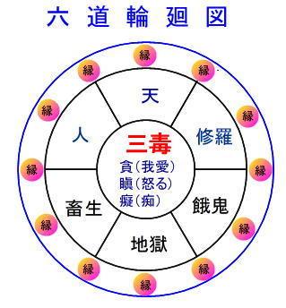 dfg (2)