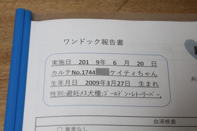 検査結果票 002