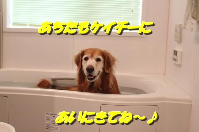 入浴ドライヤー 003