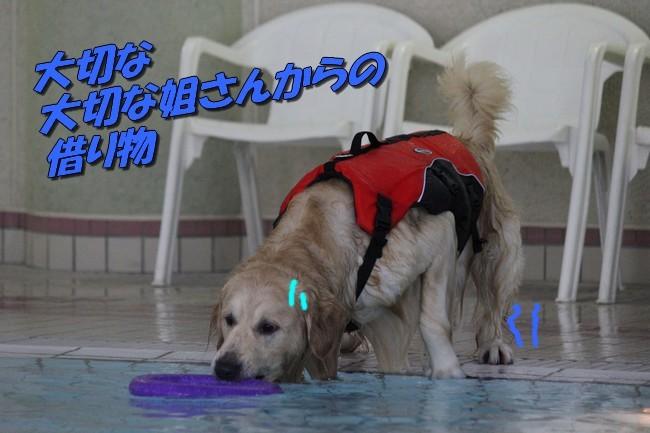 お盆プール3回目 062