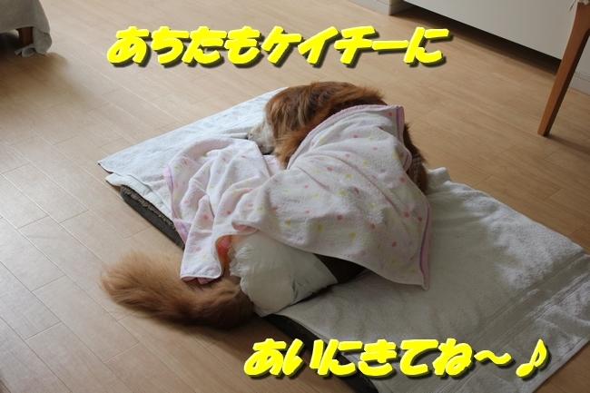 寝姿 003