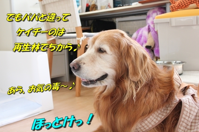 笑顔でTV鑑賞 007