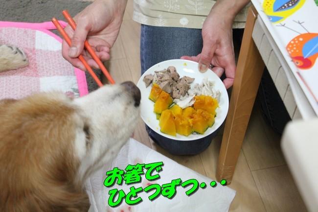 ケイチーご飯 6