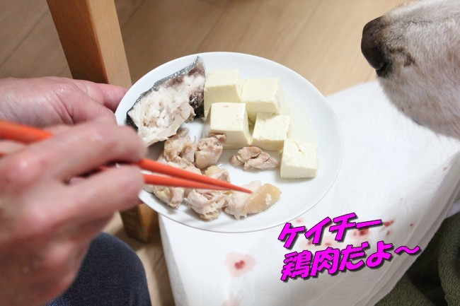 ケイチーご飯 9